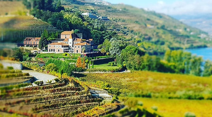 An autumn in the Douro Valley